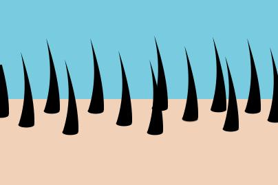 icône d'une repousse dense des cheveux